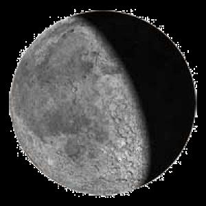 22 лунный день